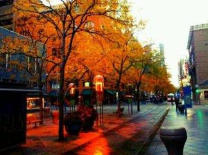 16th Street Autumn